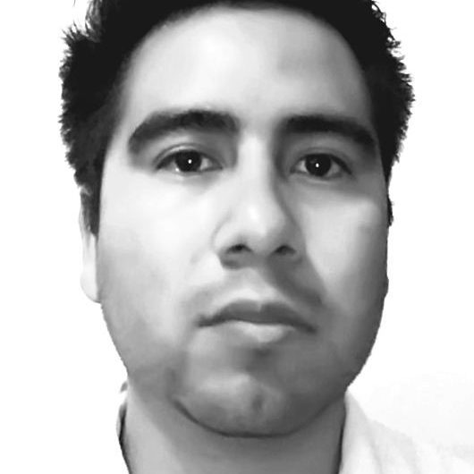 Alí Ulises Ayala Demesa